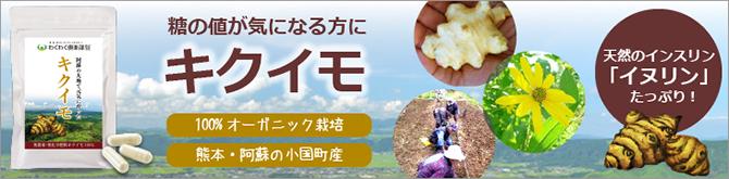 kikuimo_top02